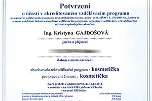 01-Kurz-Artiris-Kosmetička-300x200